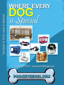 Picture of dog shop from PoochThings.com catalog