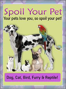 Picture of pet supply store from Spoil Your Pet catalog